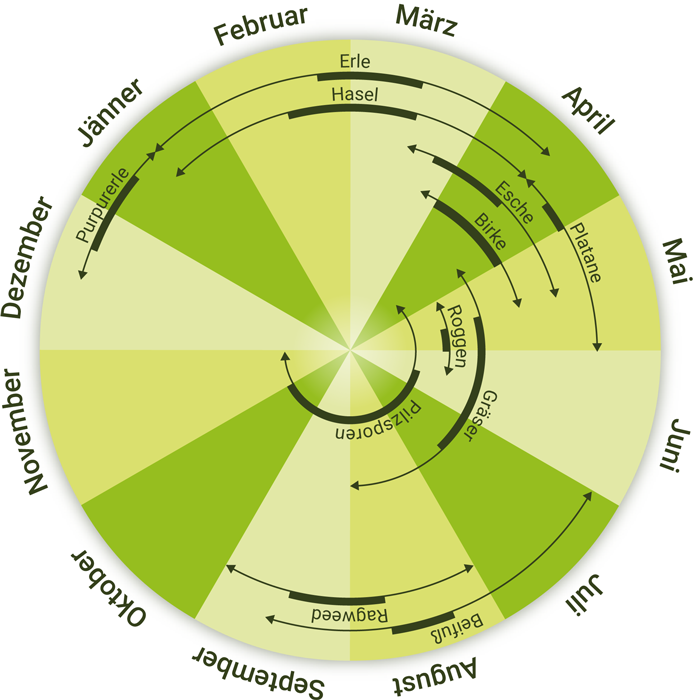 Pollenkalender 2019 aktuell